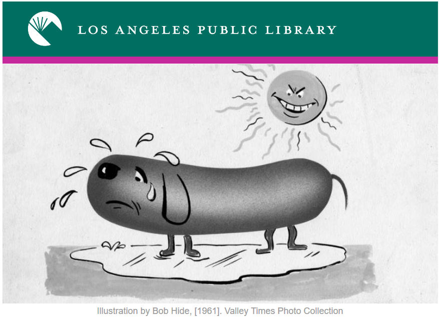 The Los Angeles Library at Home – such an amazing resource!! And it is Free!!
