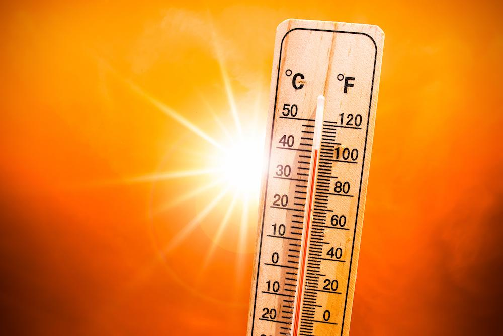Beat the Heat - Cooling Centers at Local Libraries