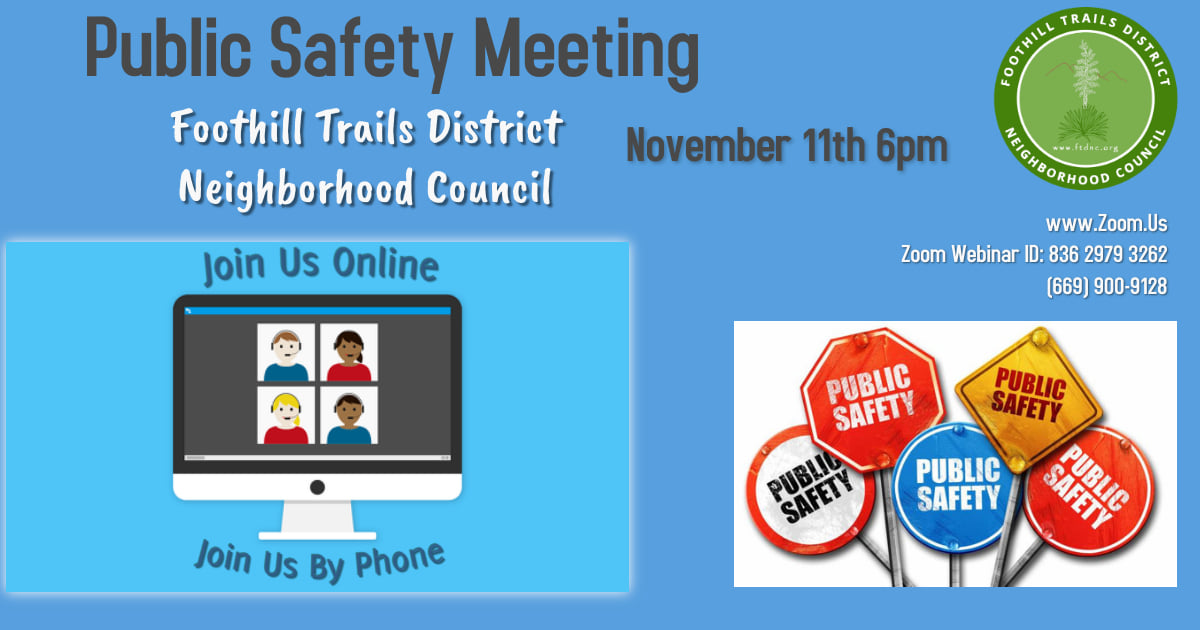 Public Safety Committee Meeting 11.11.20 at 6pm