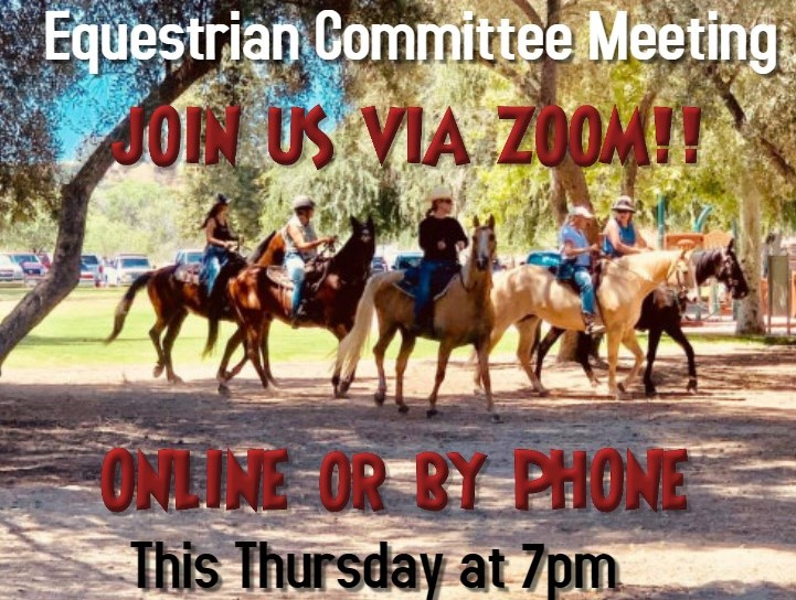 Equestrian Committee Meeting 12.10.20 at 7pm